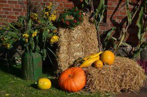 Simmerather Herbstmarkt