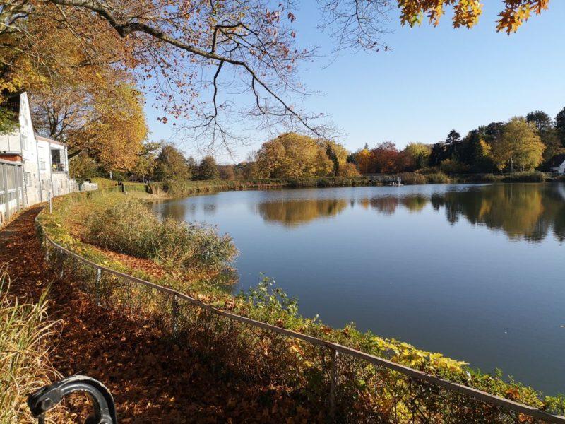 Natur im Herbst in Aachen